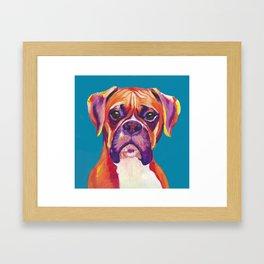 Boxer Face Blue boxer dog breed funny dog animals pets Framed Art Print