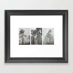 Dream forests. Triptych Framed Art Print