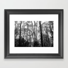 Listen To The Trees Framed Art Print