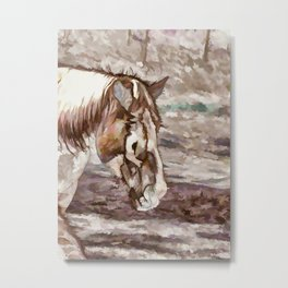 Portrait of Red Horse in summer Metal Print