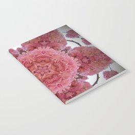 Blossom k5 Notebook