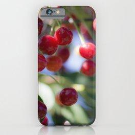 Kirschen iPhone Case