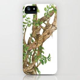 Twisting woods iPhone Case