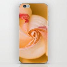 The swirl iPhone & iPod Skin
