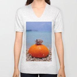 orange and hermit crab Unisex V-Neck