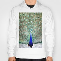 peacock Hoodies featuring Peacock by Whimsy Romance & Fun