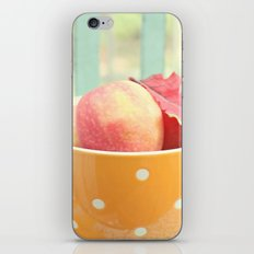 Early Autumn iPhone & iPod Skin