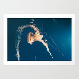 Dancing Jellyfish Art Print