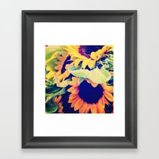 Always Sunny Sunflowers Framed Art Print