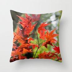 Sunlit Maples Throw Pillow
