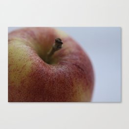 "Fruit Fine Art Print - Green, Yellow, Red Gala Apple Photo - Wall Art - Home Decor - ""Apple a Day"" Canvas Print"