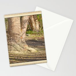 Long Shadows in an Enchanted Madrona Forest Stationery Cards