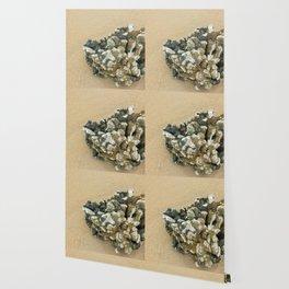 beached Wallpaper