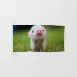 Little Pig Hand & Bath Towel