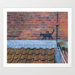 Cat Graffiti Art Print