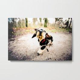 DACKEL DOG PUPPY #7 Metal Print