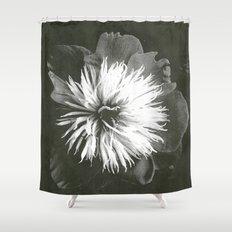 peony Shower Curtain