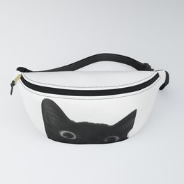 Here's lookin' at mew Fanny Pack