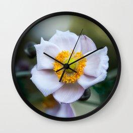 Japanese Windflower Wall Clock