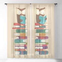 Owl Reading Rainbow Sheer Curtain