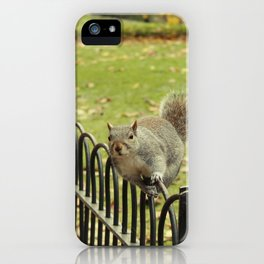 Squirrel on a Fence iPhone Case