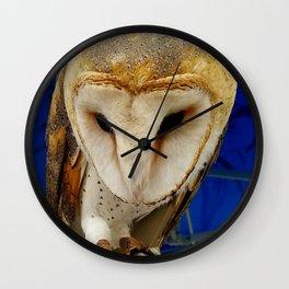 Mr. Owl the Barn Owl Wall Clock