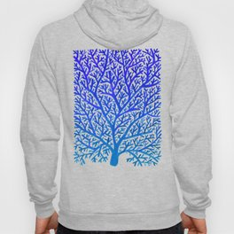 Fan Coral – Blue Ombré Hoody