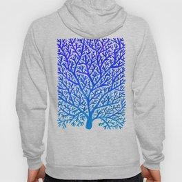 Fan Coral – Blue Ombré Hoody