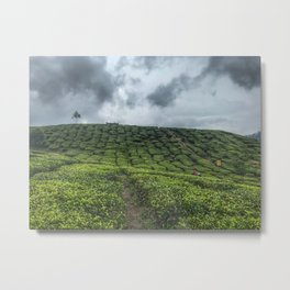 """Tea Plantation afternoon, after rain"" Cameron Highland Malaysia. Metal Print"