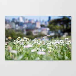 Hello Daisy! Canvas Print