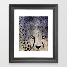 Cheetah, Namibia Framed Art Print