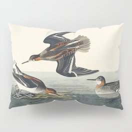 Rocky Mountain Plover from Birds of America (1827) by John James Audubon etched by William Home Liza Pillow Sham