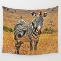 zebra Wall Tapestries featuring Zebra by minx267