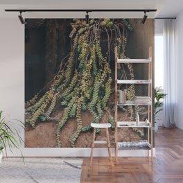 Succulent Strands Wall Mural