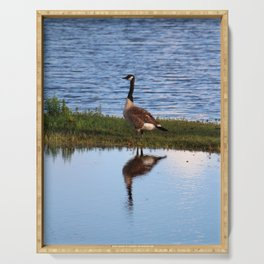 Goose Reflection Serving Tray