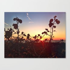 Looking beyond the Obvious Canvas Print
