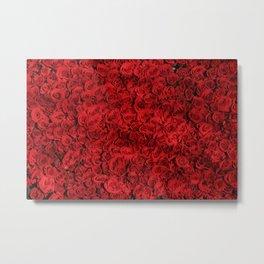 Bed of red roses Metal Print