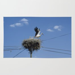 A Stork family in their nest on a telegraph pole. Rug
