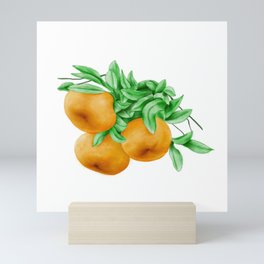 Watercolor Illustration of Chinese honey orange ponkan, which are widely grown in the United States, Brazil, Japan and China. Mini Art Print