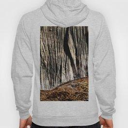 tree bark and wood Hoody