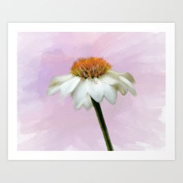 Summer Cone Flower Art Print