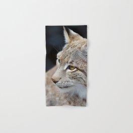 Young lynx close-up portrait Hand & Bath Towel