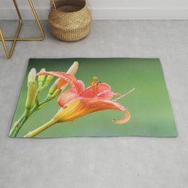 Ditch Lily Rug