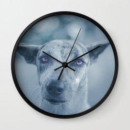 Perro Wall Clock