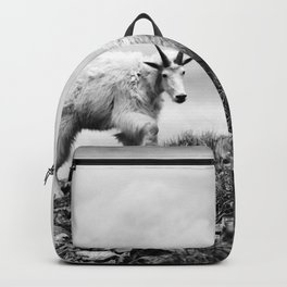 MOUNTAIN GOATS // 1 Backpack