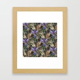 Wild Irises in the woods.... Framed Art Print