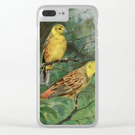 Kuhnert, Friedrich Wilhelm (1865-1926) - Wild Life of the World 1916 v.1 (Yellow Bunting) Clear iPhone Case