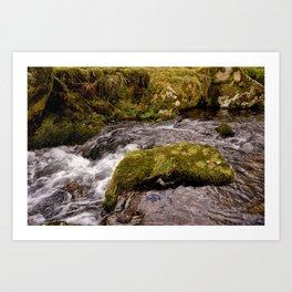 Meavy River, Dartmoor Art Print