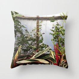 Greenhouse 009 Throw Pillow