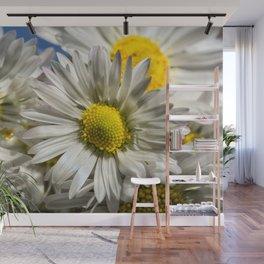DAISY FLOWER &  DAISY FLOWER Wall Mural